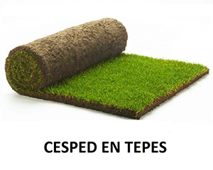 Cesped natural en tepes de Tecnicesped